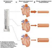 Артериальное давление контролируется организмом путем изменения частоты и силы сердечных сокращений