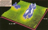 Атомно-силовой микроскоп обеспечивает визуализацию хромосом