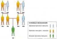 Аутосомно-рецессивные заболевания
