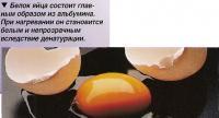 Белок яйца состоит главным образом из альбумина