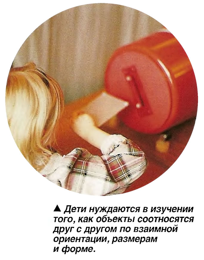 Дети нуждаются в изучении того, как объекты соотносятся друг с другом