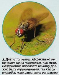 Диэтилтолуамид эффективно отпугивает таких насекомых, как мухи