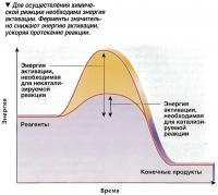 Для осуществления химической реакции необходима энергия активации
