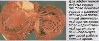 Для работы сердцу необходим постоянный значительный приток крови