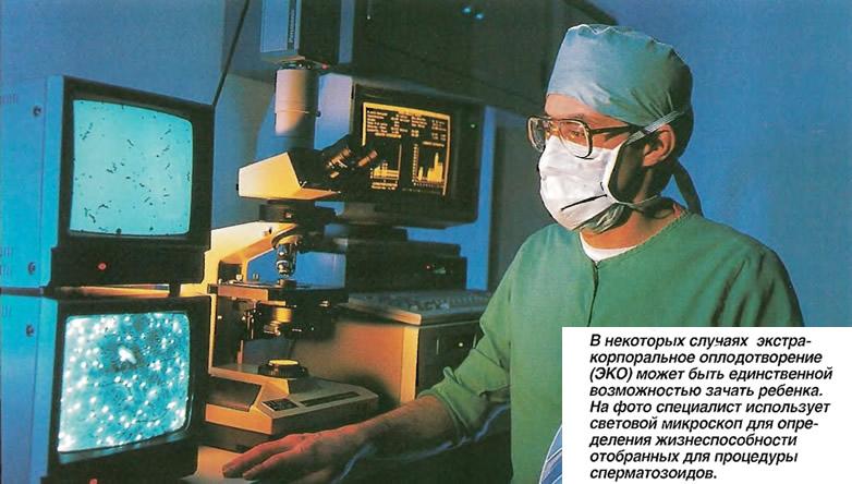 Экстракорпоральное оплодотворение (ЭКО)