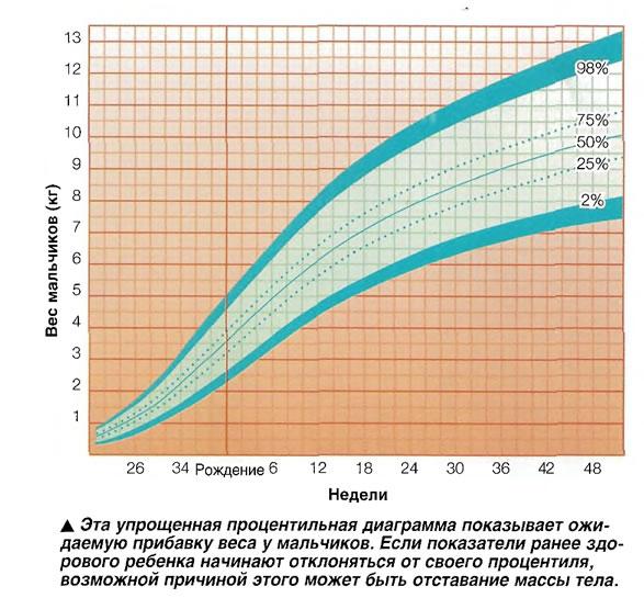 Эта упрощенная процентильная диаграмма показывает ожидаемую прибавку веса у мальчиков