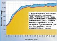 График демонстрирует быстрый рост мозга в первые пять лет жизни