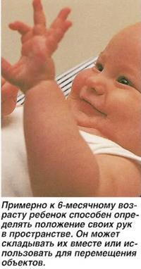 К 6-месячному возрасту ребенок способен определять положение своих рук в пространстве