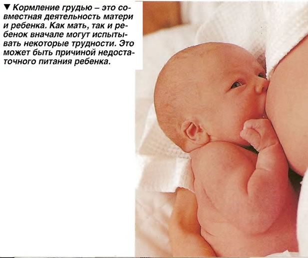 Кормление грудью - это совместная деятельность матери и ребенка