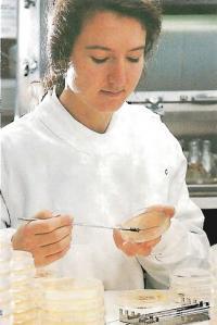 Лаборант наносит образцы на агар в чашке Петри, чтобы бактерии размножились