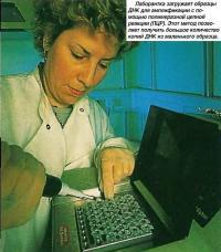 Лаборантка загружает образцы ДНК для амплификации