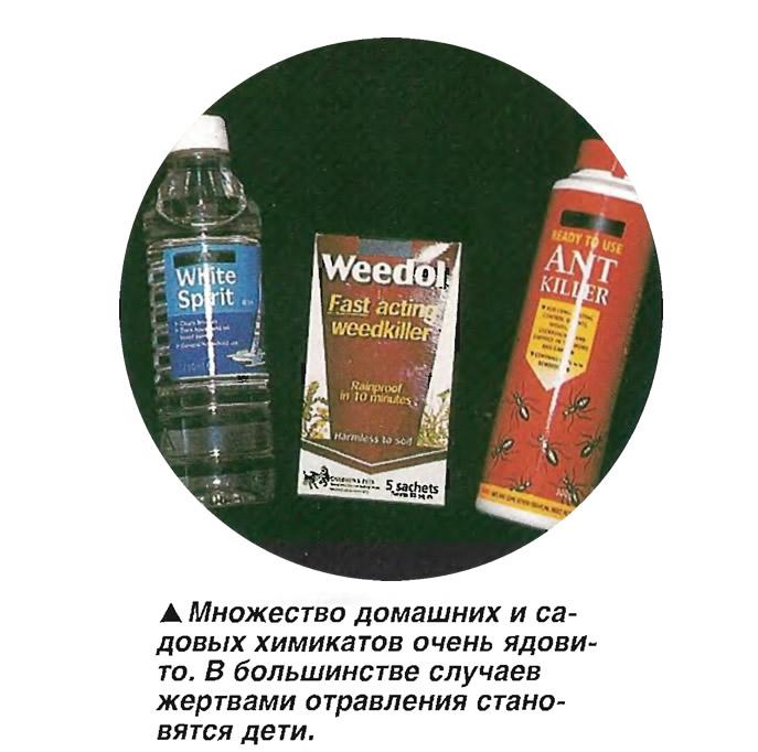 Множество домашних и садовых химикатов очень ядовито