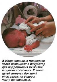 Недоношенных младенцев часто помещают в инкубатор для поддержания их жизни и оценки состояния