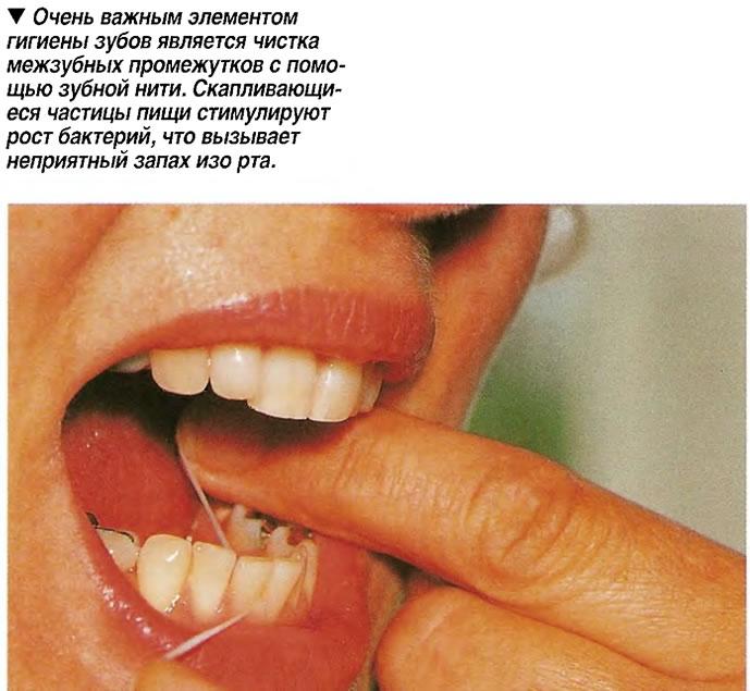 Очень важным элементом гигиены зубов является чистка межзубных промежутков с помощью зубной нити
