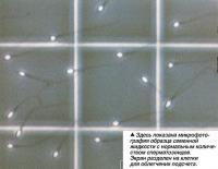 Ообразец семенной жидкости с нормальным количеством сперматозоидов