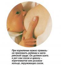 При кормлении важно правильно приложить ребенка к материнской груди