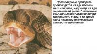 Противоядные препараты производятся из яда насекомых или змей