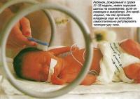 Ребенок, рожденный в сроки 31-35 недель, имеет хорошие шансы на выживание