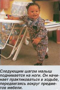 Следующим шагом малыш поднимается на ноги