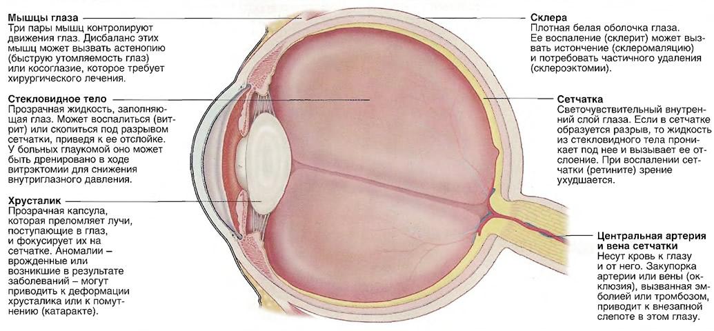 Состояния глаза, требующие хирургического вмешательства