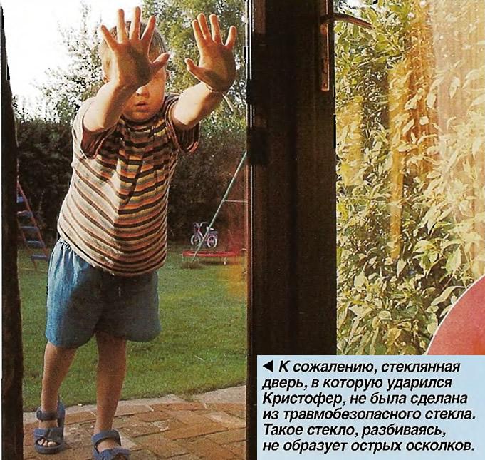 Стеклянная дверь, в которую ударился Кристофер