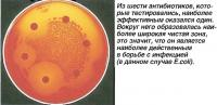 Тест антибиотиков
