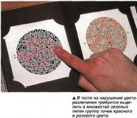 Тест на нарушение цвето-различения