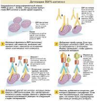 Твердофазный иммуноферментный анализ ТИФА (ELISA)