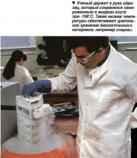 Ученый держит в руке образец, который сохранялся замороженным в жидком азоте при -196°С