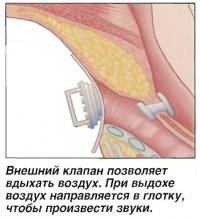 Внешний клапан позволяет вдыхать воздух