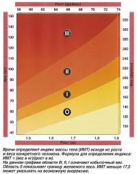 Врачи определяют индекс массы тела (ИМТ) исходя из роста и веса конкретного человека