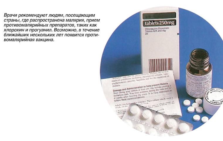 Врачи рекомендуют прием противомалярийных препаратов